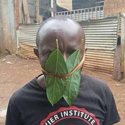 Selbst gebastelter Mundschutz aus Heilblättern