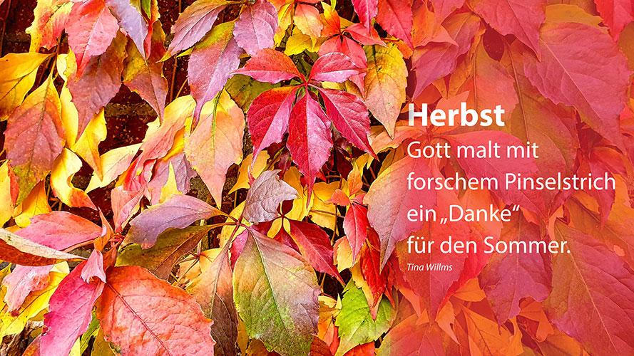 """Herbst - Gott malt mit forschem Pinselstrich ein """"Danke"""" für den Sommer. Tina Willms"""